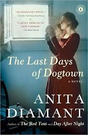 Anita Daimant's The Last Days of Dogtown is a fictional novel based on the colonial settlement in Massachusetts.