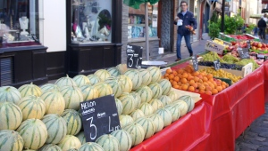 Melons at the market