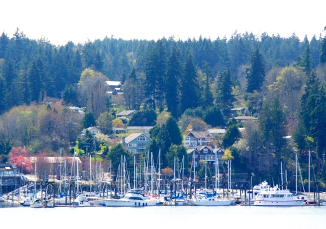 Eagle Harbor, Bainbridge Island, Washington
