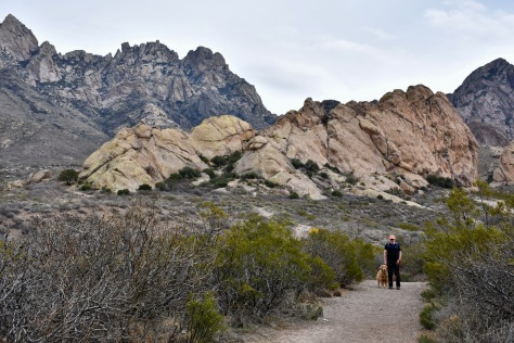 view of Organ Mountains Las Cruces New Mexico www.offthebeatenpagetravel.com